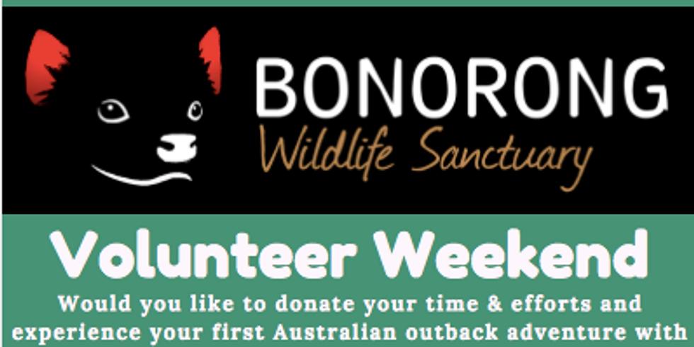 Bonorong Volunteer