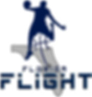 2017 CLEAN Flight Logo Center O-Star.jpg