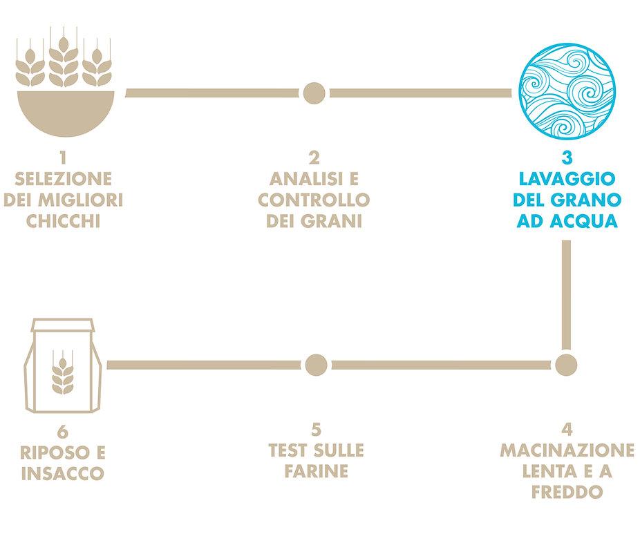 info grafica_ciclo del grano_210114.jpg