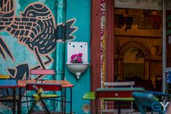 Mexican oasis- Ellátó Kert