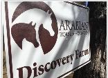 The Arabian Horse Discovery Farm, with Royal Legend Arabians