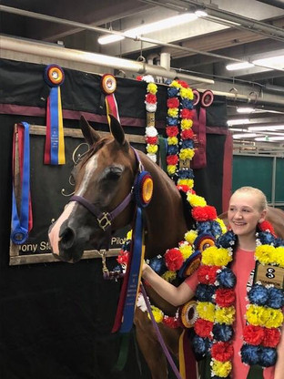 Youth Spotlight: Showing With Katie Steiner