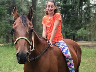 The Arabian Horse: A Family Horse
