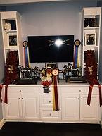 Displaying Awards