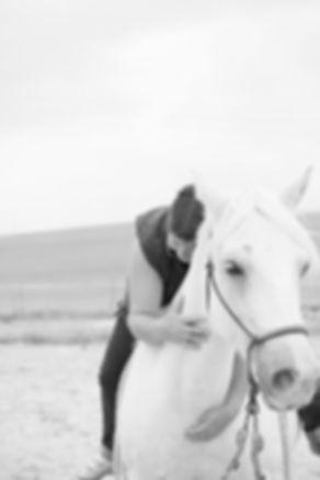 © Anne Lemaître photographe / portrait équin