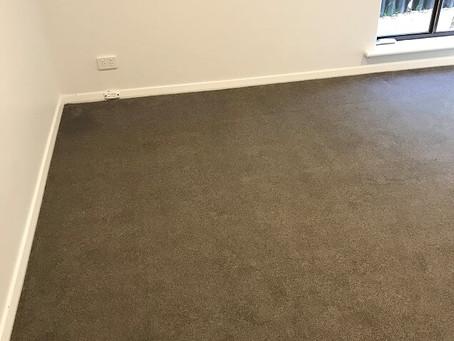Bunnings Carpet Install