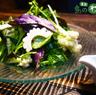 島野菜サラダ-宮古みそドレッシング