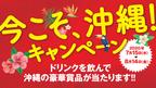 今こそ沖縄!キャンペーン!7/15~8/14開催!