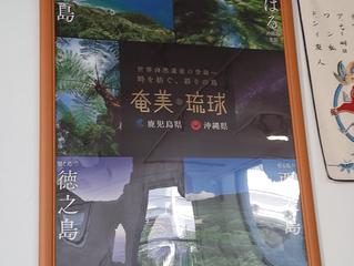 奄美・琉球世界自然遺産登録を応援しています。