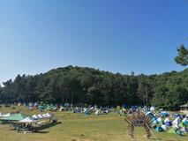 VOLA OPEN AIR 2021 - фестивалът, който ни дари с пулсираща енергия за година напред