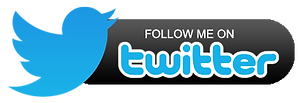 Follow Me on Twitter.png