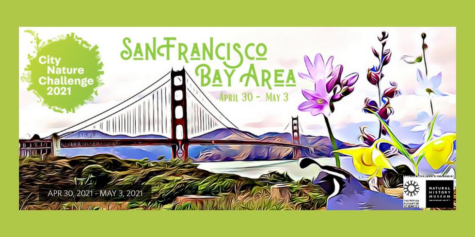 City Nature Challenge 2021 (Community Hike)