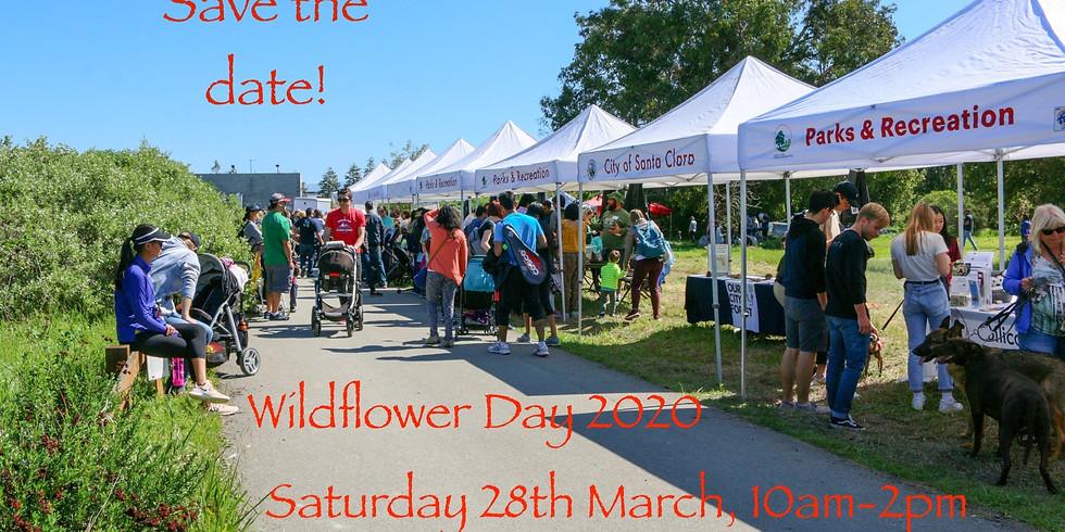 Wildflower Day 2020