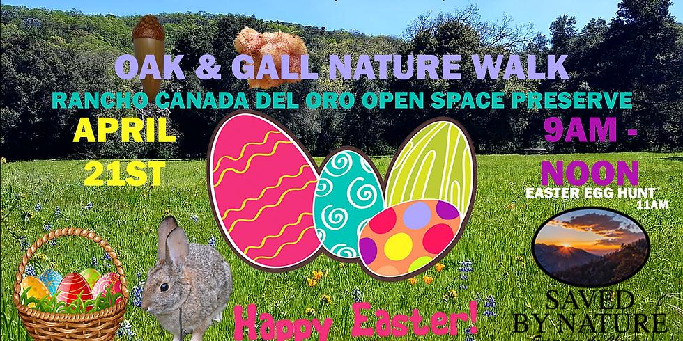 Oak & Gall Nature Walk & Easter Egg Hunt!
