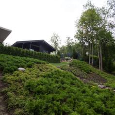 Дремучий домик – озеленение и благоустройство территории