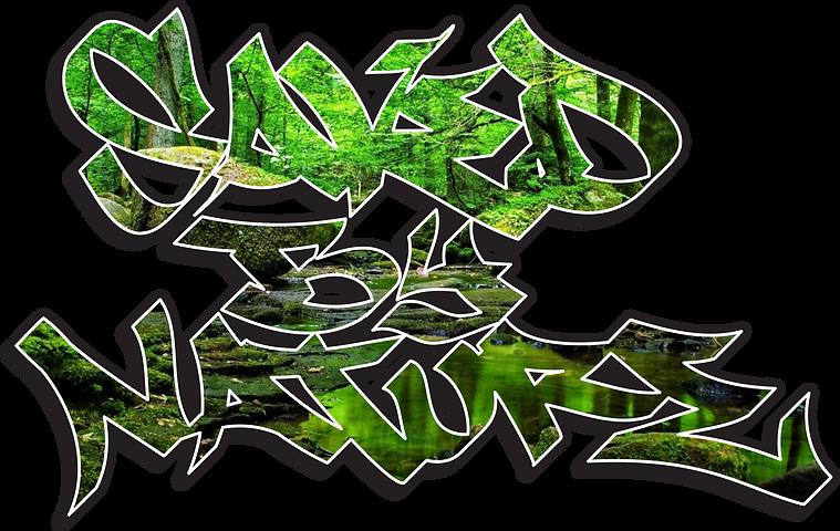 sbn_01 original transparent.png