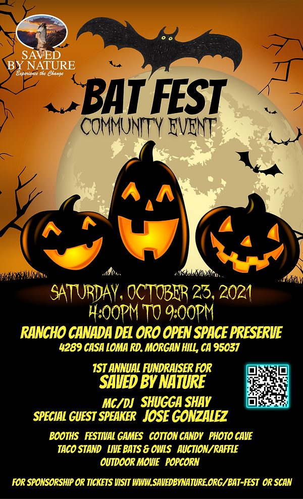 Bat Fest - Flyer.png