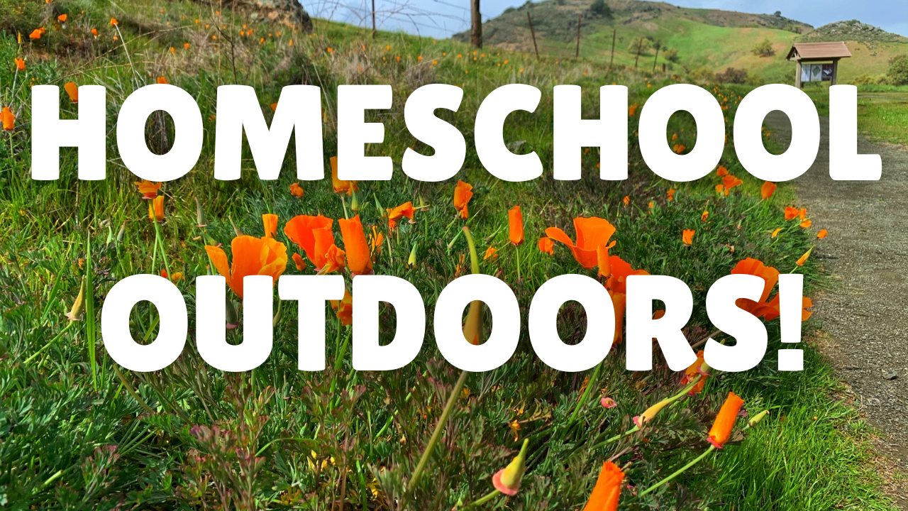 Homeschool Outdoors (1)