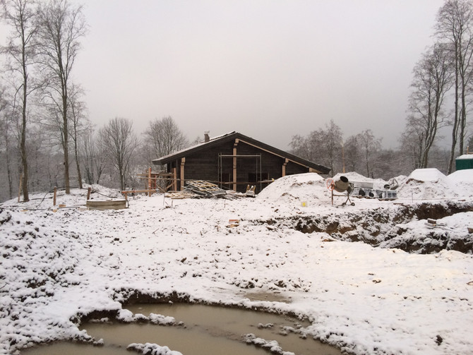 Дремучий домик – крыша