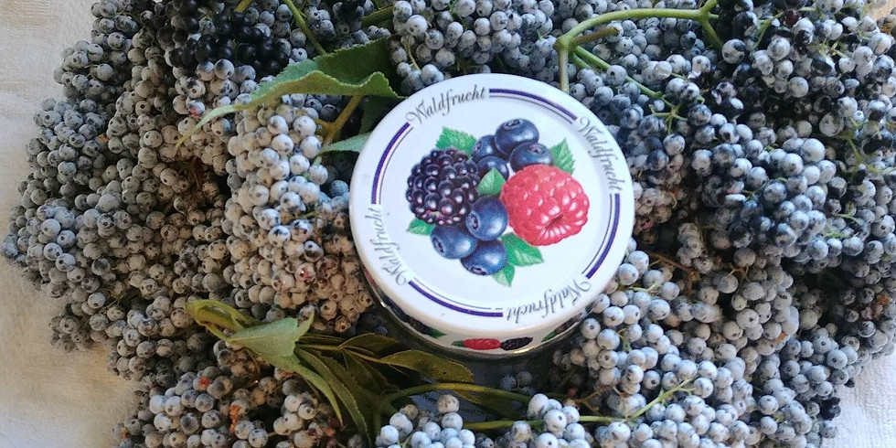 Traditional Foods Hike & Cooking Class - Blue Elderberry (Part 2)