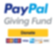 Paypal-Giving-Fund.png