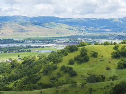Coyote Valley Not Only Stores Water It Absorbs Water: Natural Infrastructure and Flood Protection
