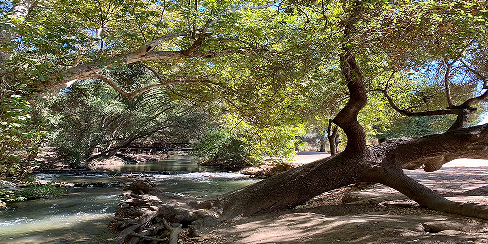 A Creek's Culture & Nature