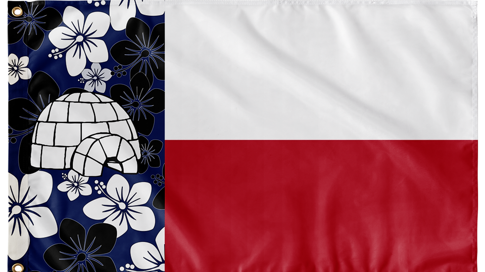 Texas Double Sided Flags