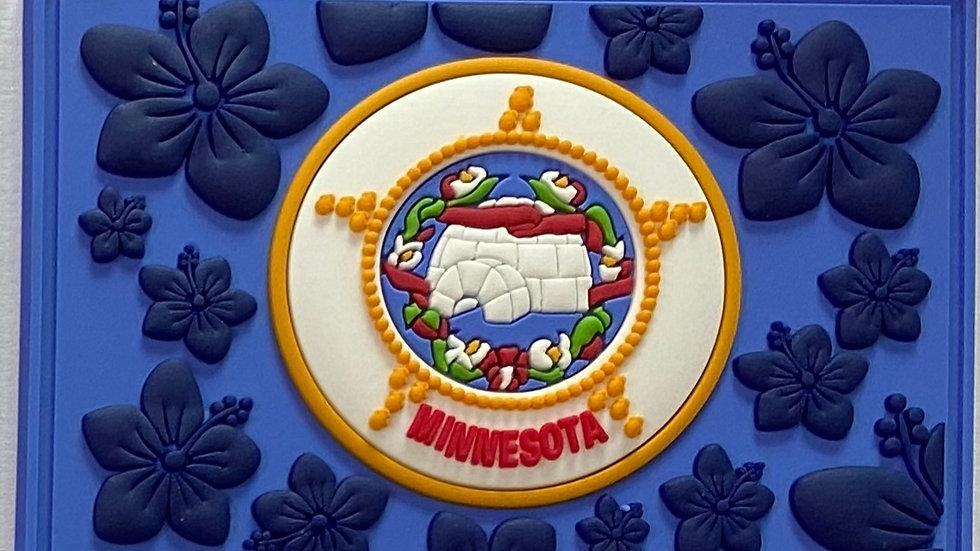 Minnesota PVC Patch
