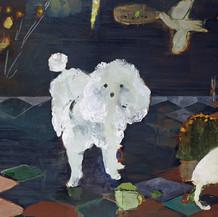 Poodle & Co., 2008