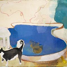 Gato e piscina, 2006