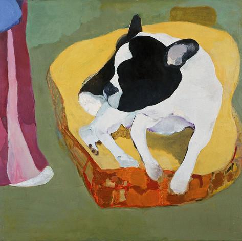Mondo cane, 2007