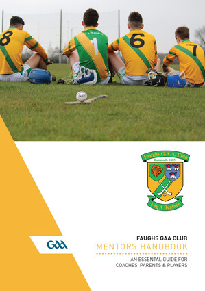 Faughs Hurling brochure