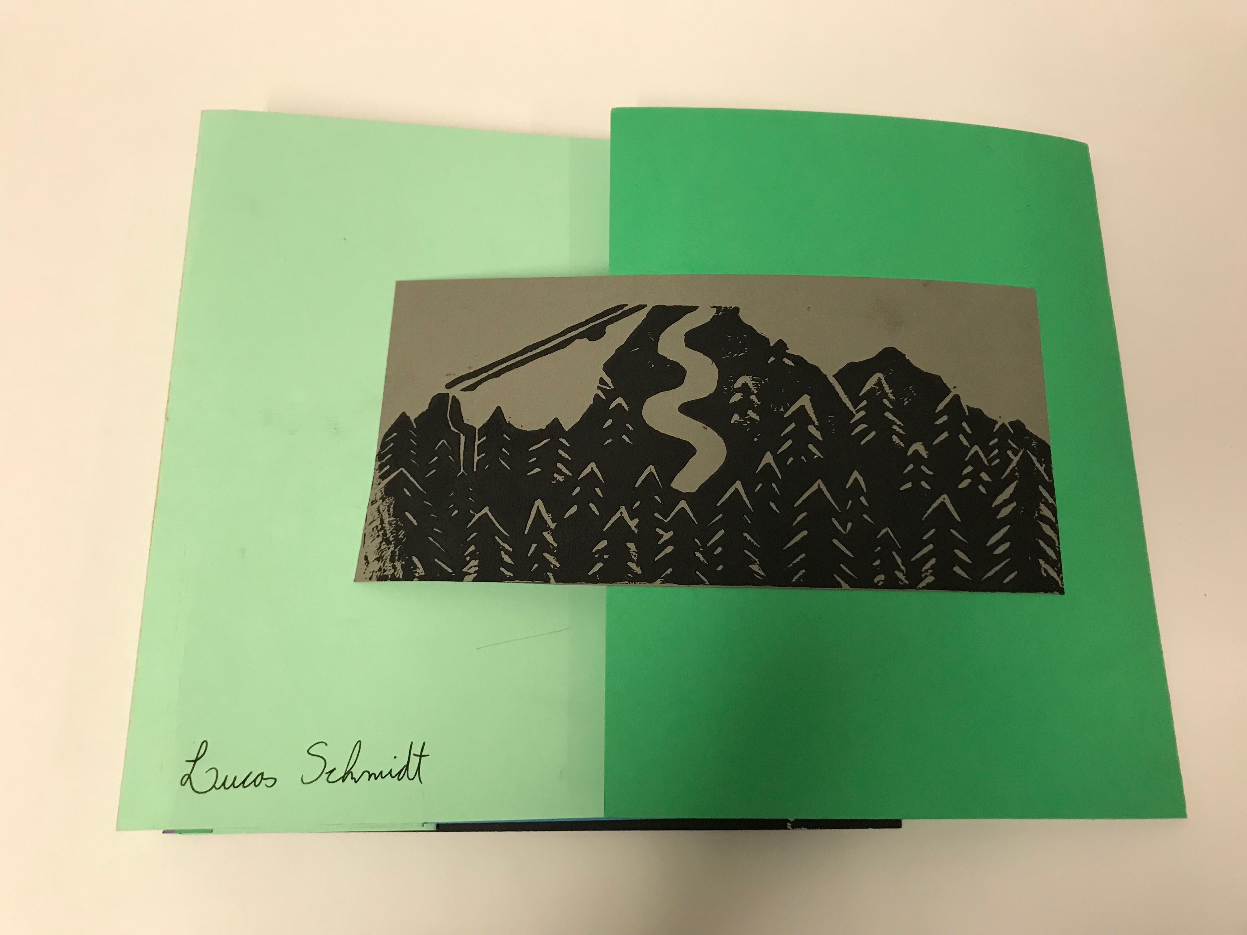 Flag Book cover