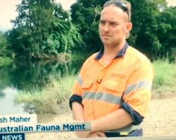 Fauna Spotter Media