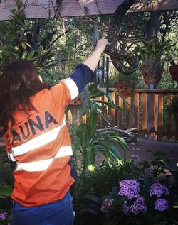 Fauna Spotter catcher relocation