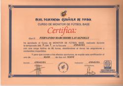 Real Federacion Española