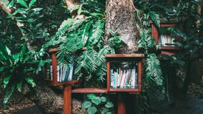 Five Books I Wish I'd Read Before Leading  a Team