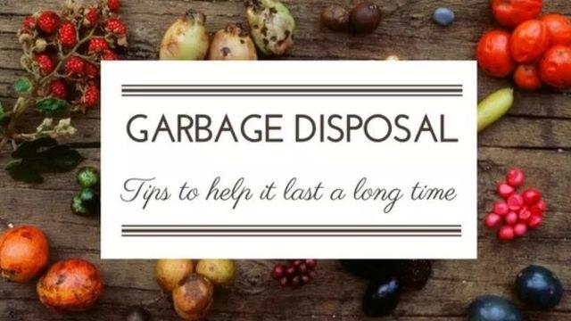Empire Plumbing Garbage Disposal Tips