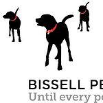 BPF Logo.jpg