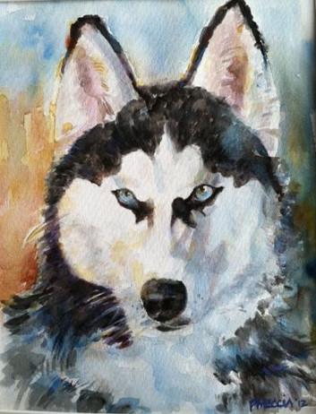 husky portrait.jpg