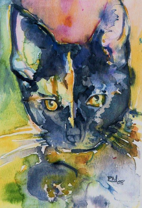 cat portrait.jpg