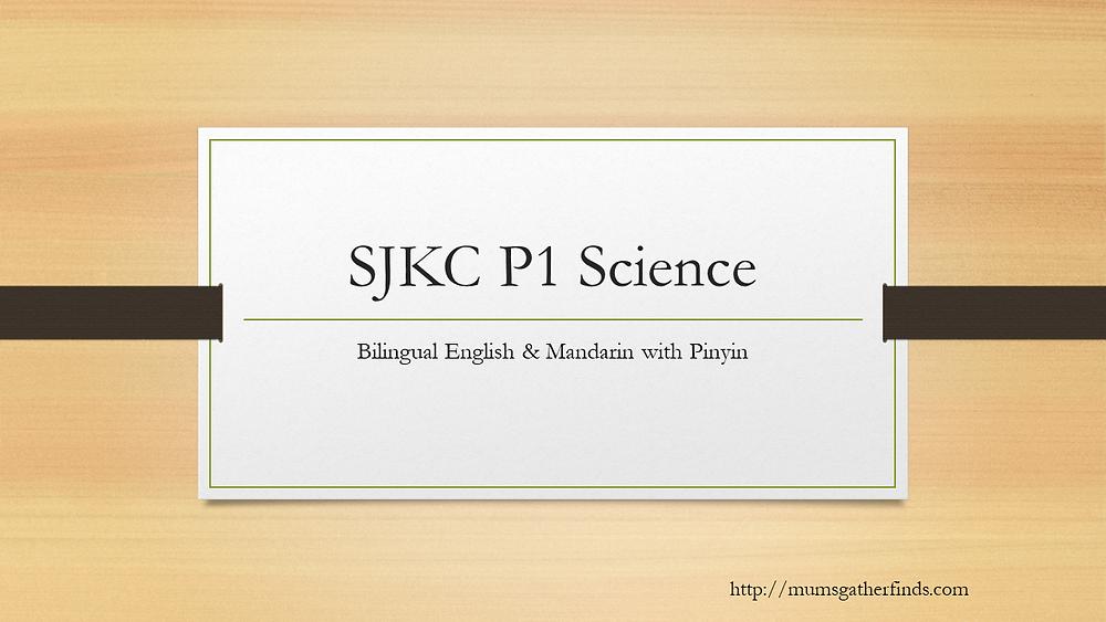 SJKC P1 Science Bilingual Chinese English Videos
