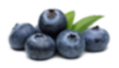 Blueberries-PNG-High-Quality-Image.png