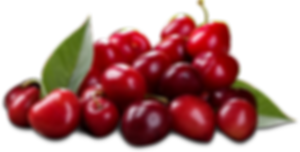 assets-red-20cherries-500x500.png