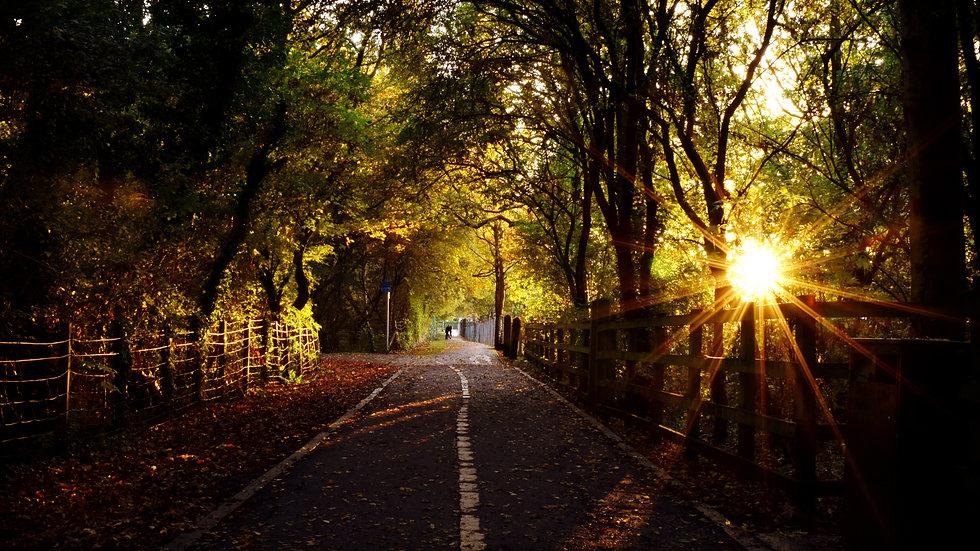 Hurst Grange Park