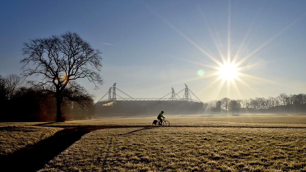 Moor Park winter sun