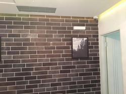 רמקול שקוע תמונת קיר