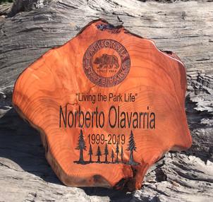 State Park Sign Redwood