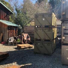 Curing Redwood